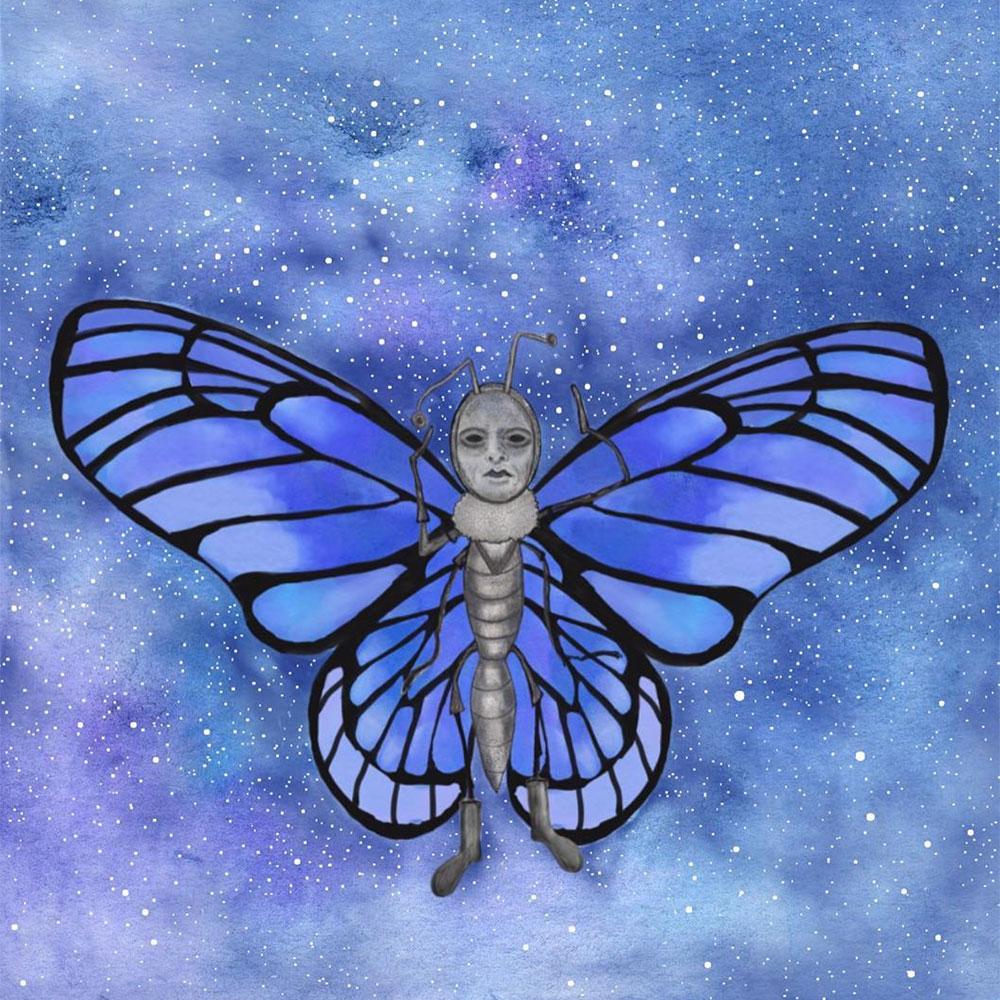 petrabloemsma_vlinder