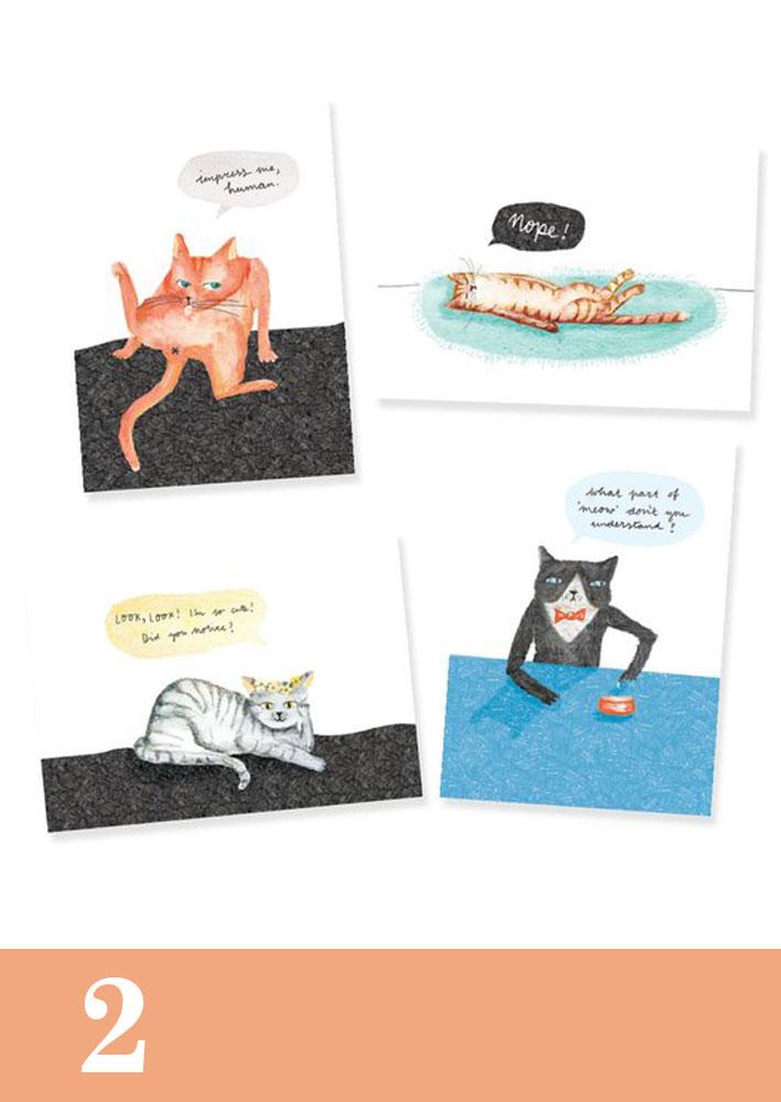 ansichtkaarten-grappige-katten