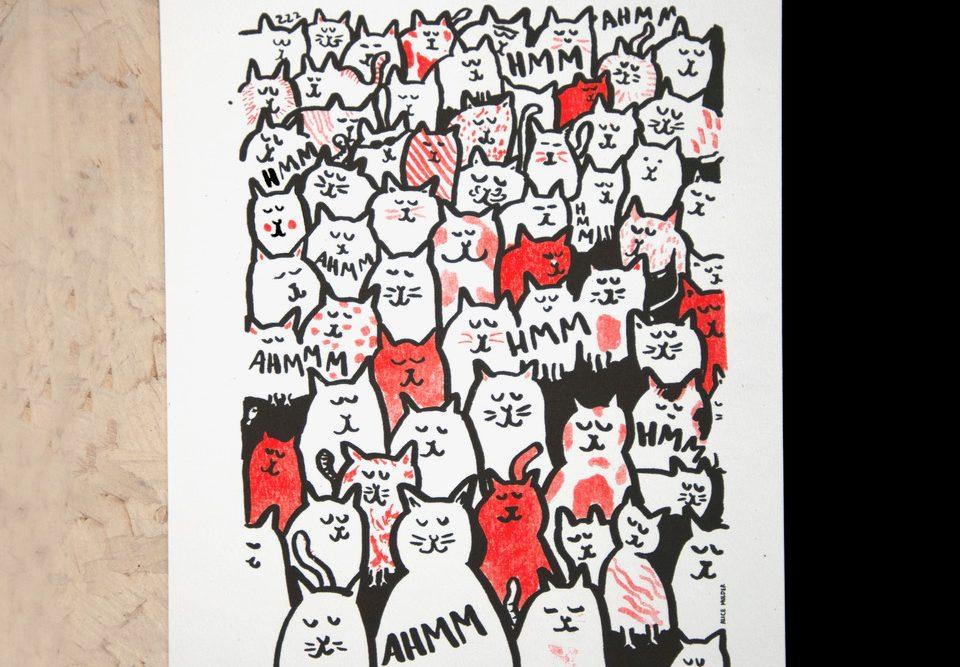 Katten A4-insta