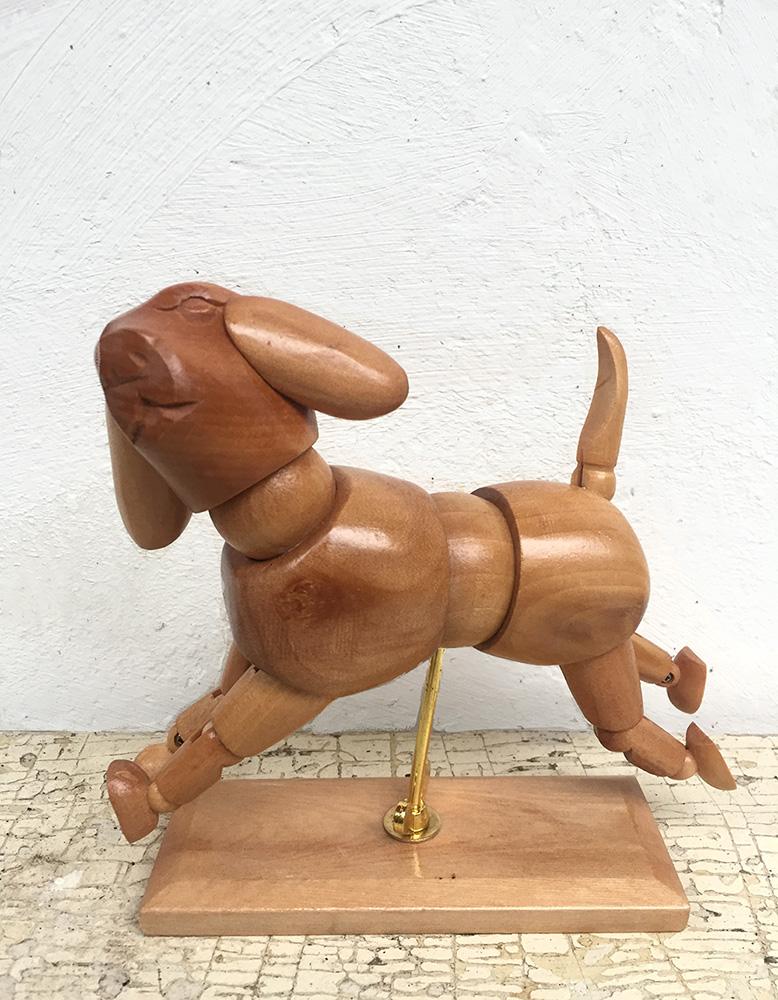 gespot_maart_hond1